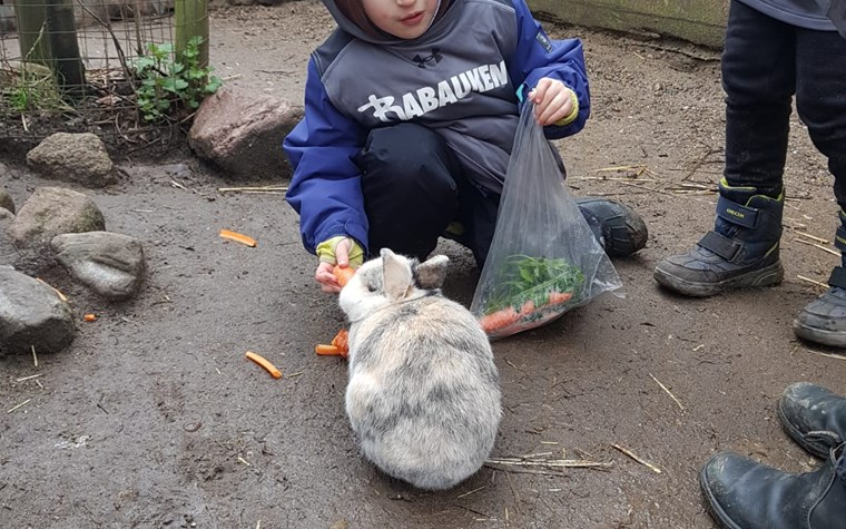 Rabauken zu Besuch auf dem Kinderbauernhof in Kirchdorf